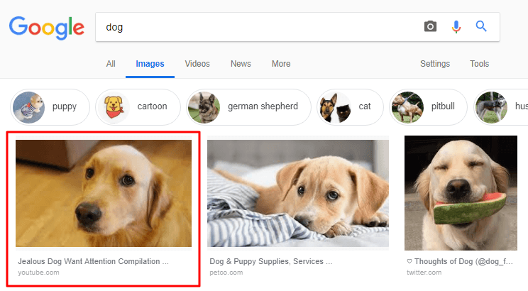 video seo trend 2019 google display video in image search